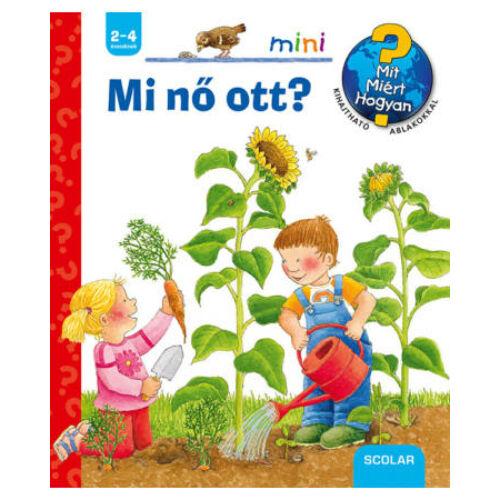 mi_no_ott_mit_miert_hogyan